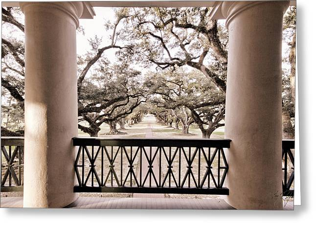 Josephine's View Of Oak Alley Plantation Greeting Card by Timothy V Ganier