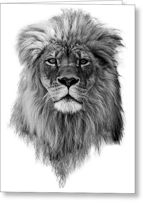 Joshua In Black And White Greeting Card by Everet Regal