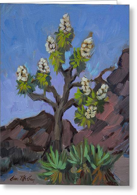 Joshua Tree In Bloom Greeting Card by Diane McClary