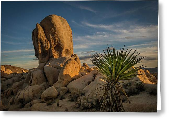 Joshua Tree Rock Formation Greeting Card