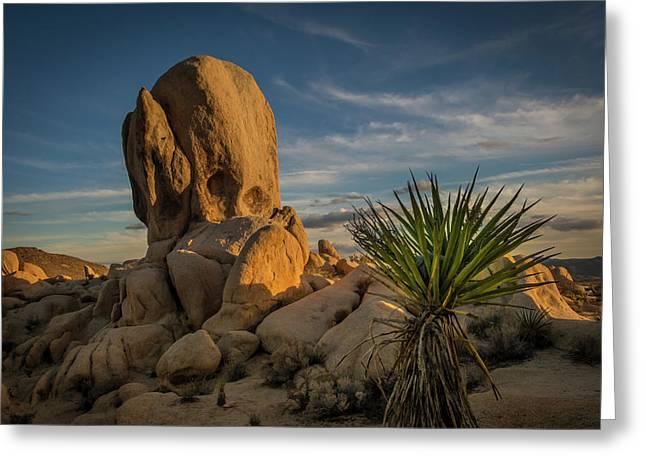 Joshua Tree Rock Formation Greeting Card
