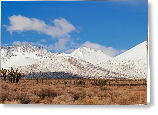 Joshua Trees In The Sierra Nevada Greeting Card by Panoramic Images