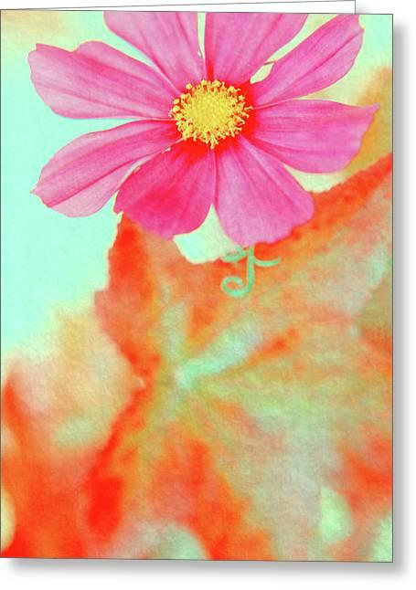 Tangerine Greeting Cards - Joy Greeting Card by Bonnie Bruno