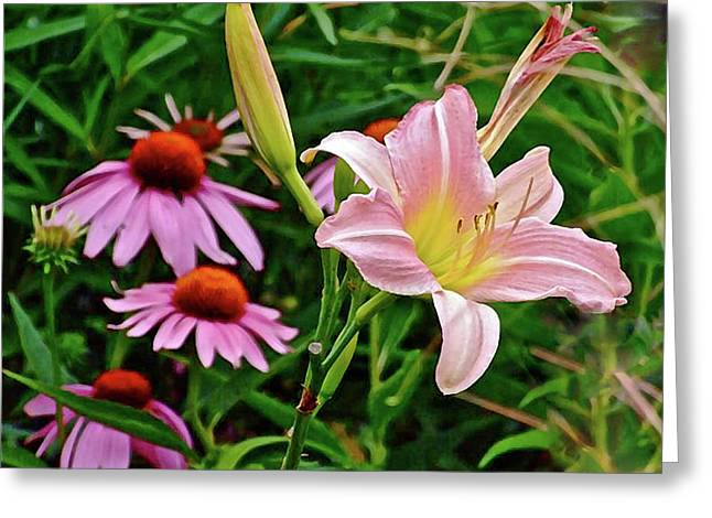 July Lily #10 Greeting Card
