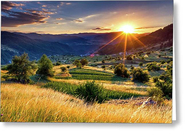 July Sun Greeting Card by Evgeni Dinev