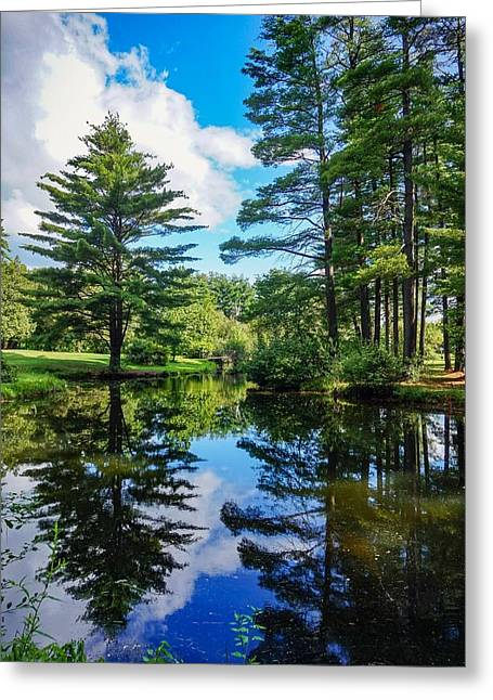 June Day At The Park Greeting Card
