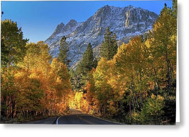 June Lake Loop Greeting Card by Donna Kennedy