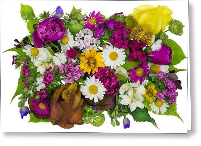 June Plants Concept Greeting Card by Aleksandr Volkov