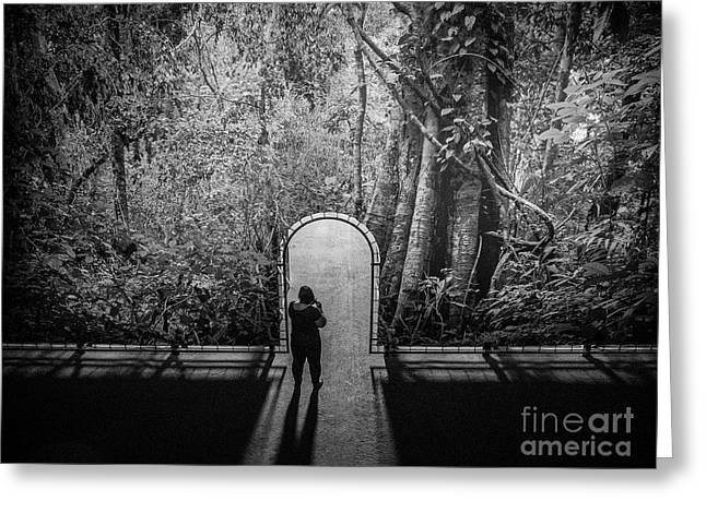 Greeting Card featuring the photograph Jungle Entrance by Hans Janssen
