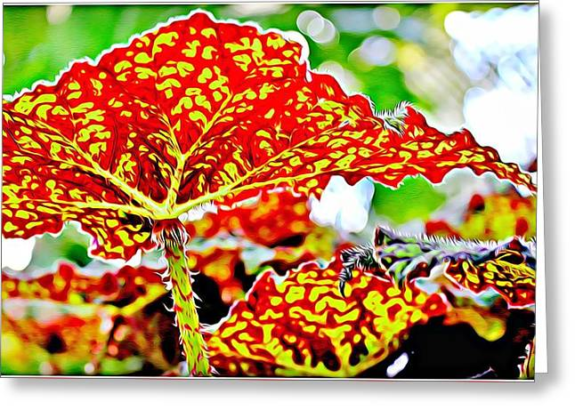 Greeting Card featuring the photograph Jungle Leaf by Mindy Newman