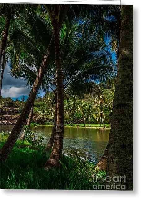 Jungle River Palms Kauai Greeting Card
