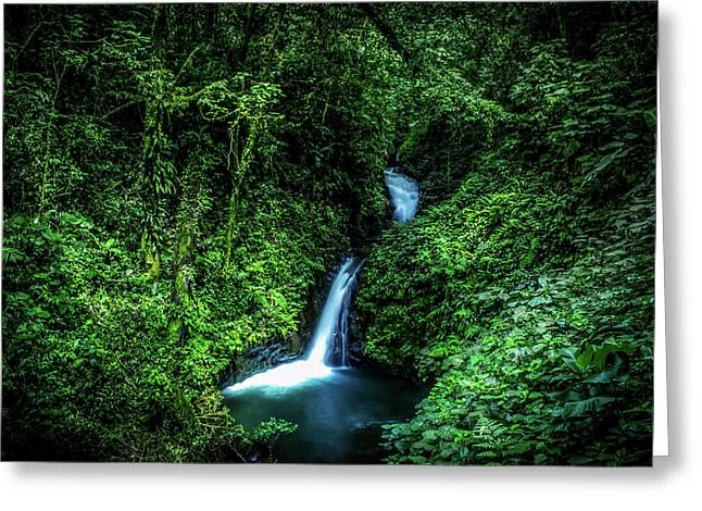 Jungle Waterfall Greeting Card