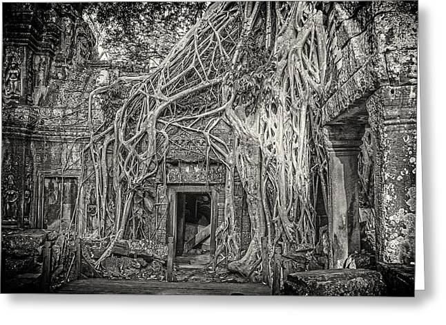 Jungles And Temples Greeting Card by Nichon Thorstrom