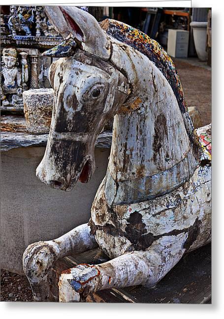 Junkyard Horse Greeting Card by Garry Gay