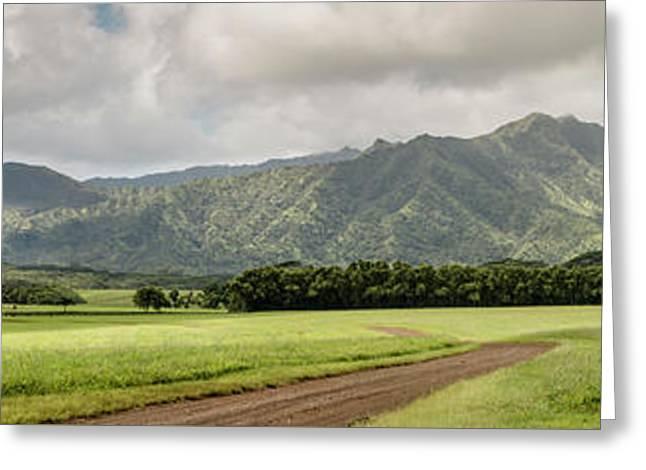 Jurassic Kahili Ranch Panorama Greeting Card