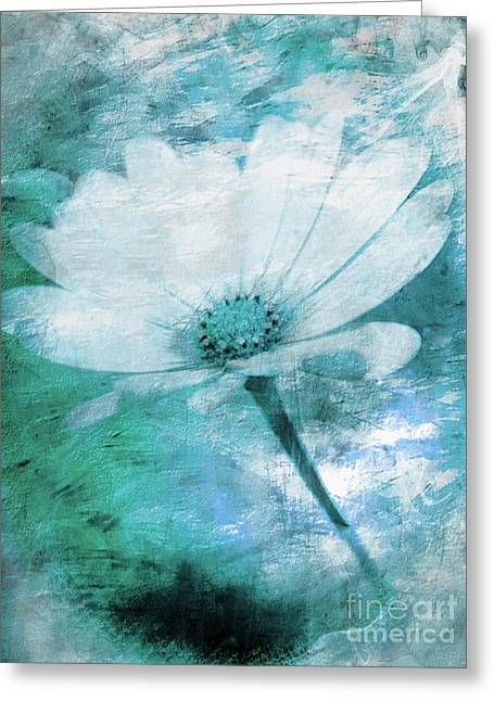 Just A Daisy Greeting Card by Clare Bevan