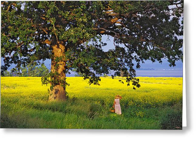 Just A Few. North Hero, Vermont Greeting Card