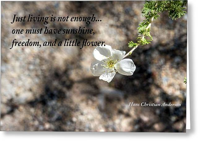 Just Living Greeting Card by Nadine Berg