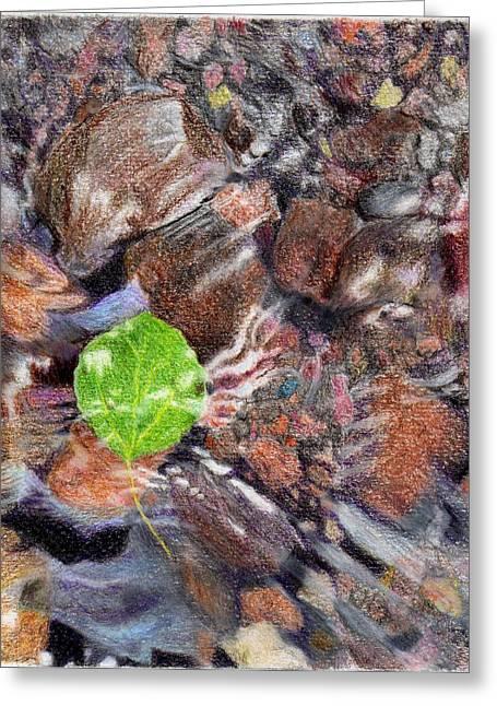 Just Look Down Greeting Card by Nils Beasley