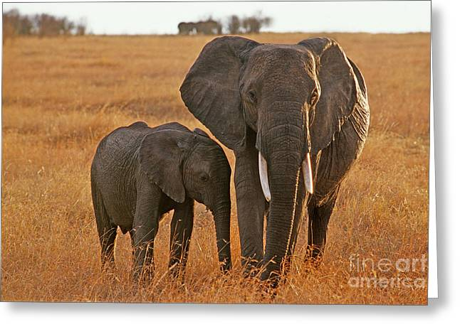 Just Mom And Me Greeting Card
