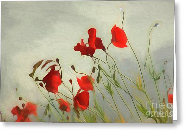 Just Some Poppies Greeting Card