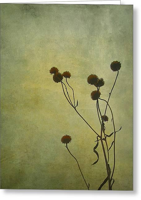 Judi Bagwell Greeting Cards - Just Weeds . . . Greeting Card by Judi Bagwell
