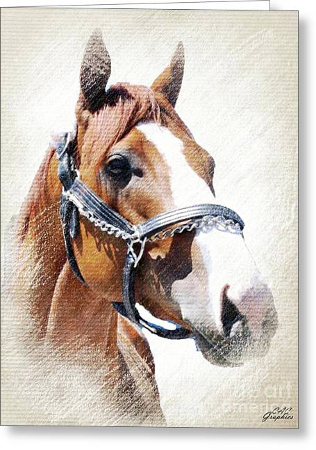 Justify Greeting Card