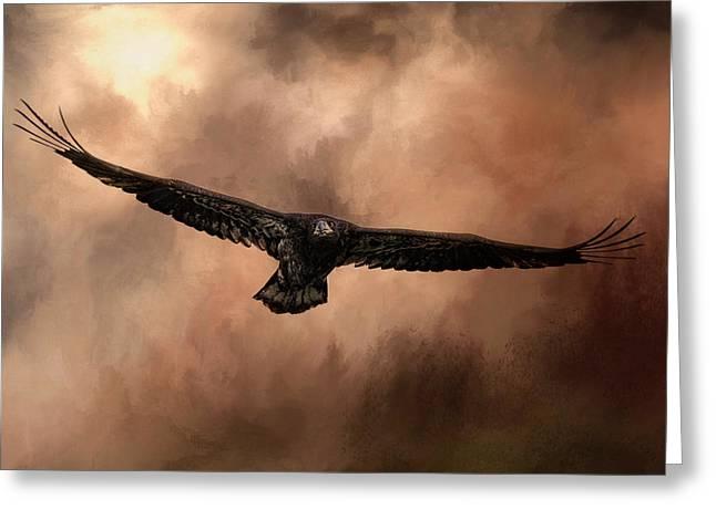 Juvenile Bald Eagle In The Sepia Sky Greeting Card