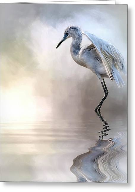 Juvenile Heron Greeting Card