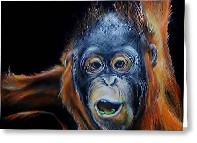 Juvenile Orangutan Greeting Card by Jean Cormier