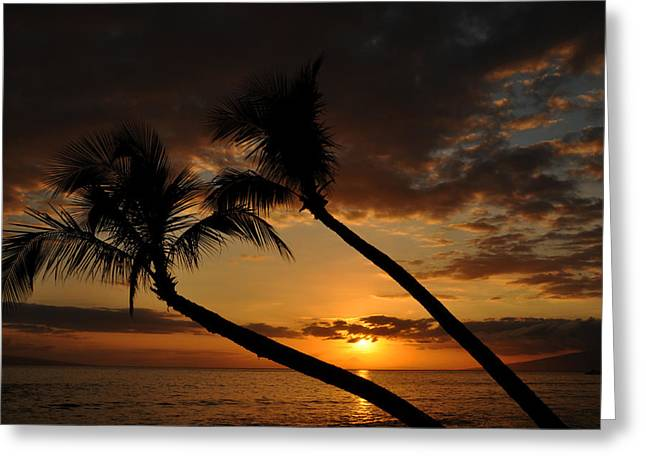 Coconut Palm Tree Greeting Cards - Kaanapali Beach Sunset Greeting Card by Kelly Wade