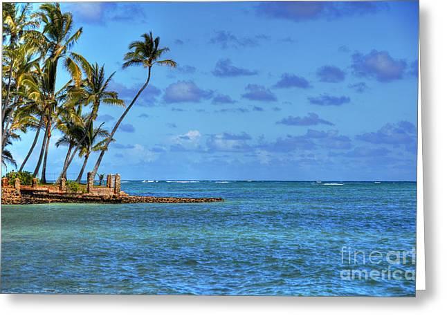 Kahaluu Oahu Palms Greeting Card