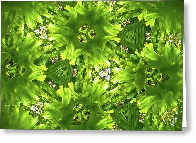 Kaleidoscope Flower Greeting Card by Julia Wilcox