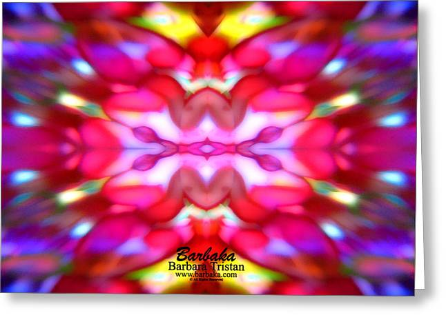 Greeting Card featuring the photograph Kaleidoscope Wonder by Barbara Tristan