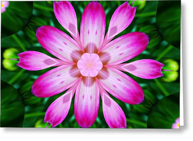 Kaleidoscope Of A Dahlia Greeting Card