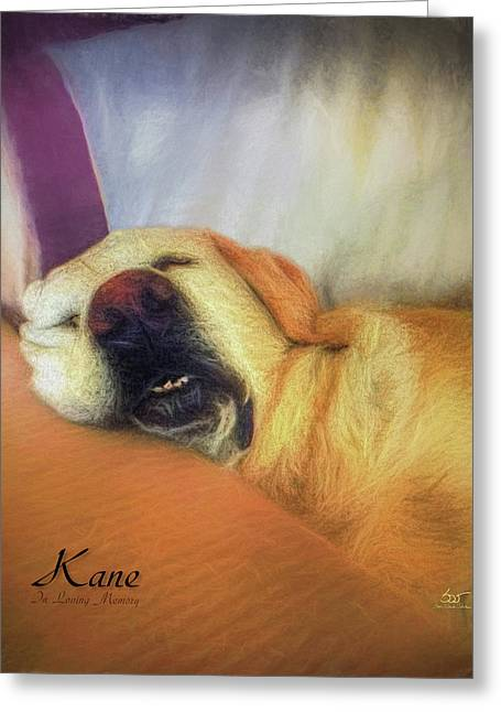 Kane Greeting Card