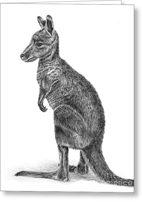 Kanga Greeting Card