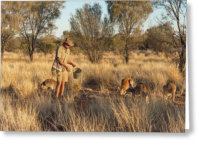 Kangaroo Sanctuary Greeting Card