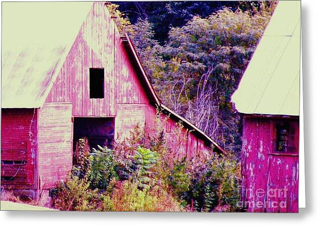 Kansas Country Greeting Card by Christine Belt