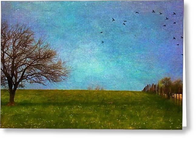 Kansas Early Spring Prairie Greeting Card