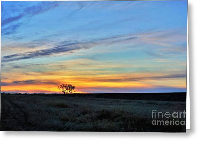 Kansas Sunrise1 Greeting Card