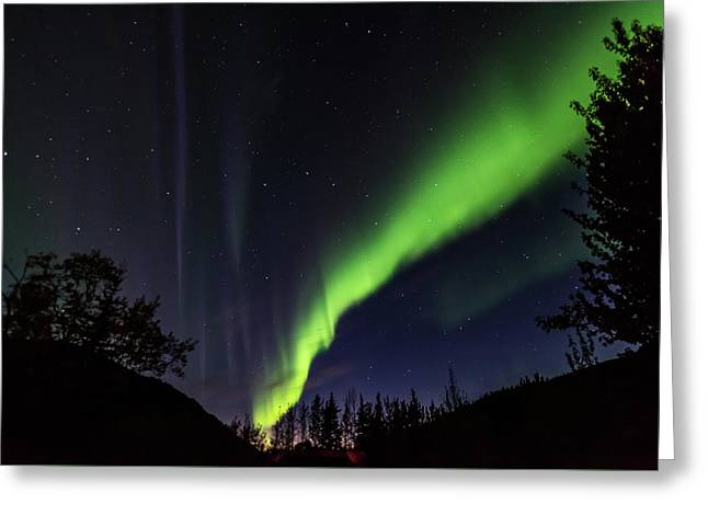 Kantishna Northern Lights In Denali National Park Greeting Card
