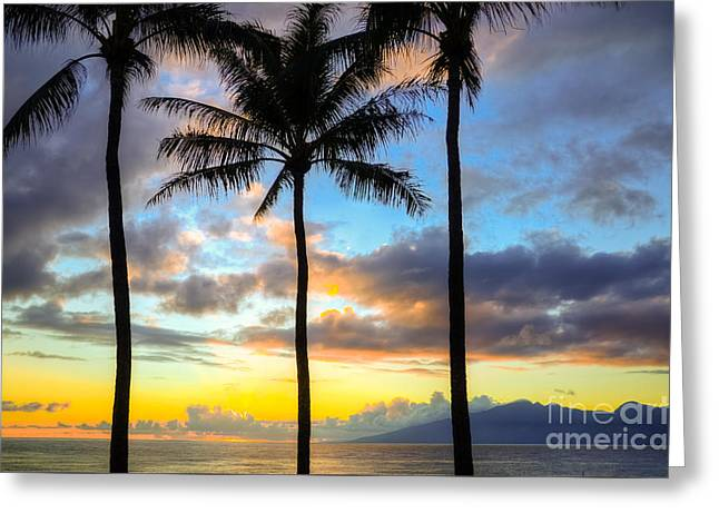 Greeting Card featuring the photograph Kapalua Dream by Kelly Wade