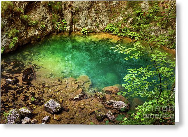 Karstic Spring Greeting Card by Catalin Petolea