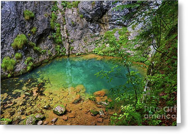 Karstic Spring In Romania Greeting Card by Catalin Petolea