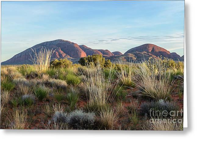 Greeting Card featuring the photograph Kata Tjuta 04 by Werner Padarin