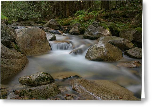 Katahdin Stream Cascades Greeting Card