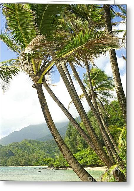 Kauai Beach View Greeting Card