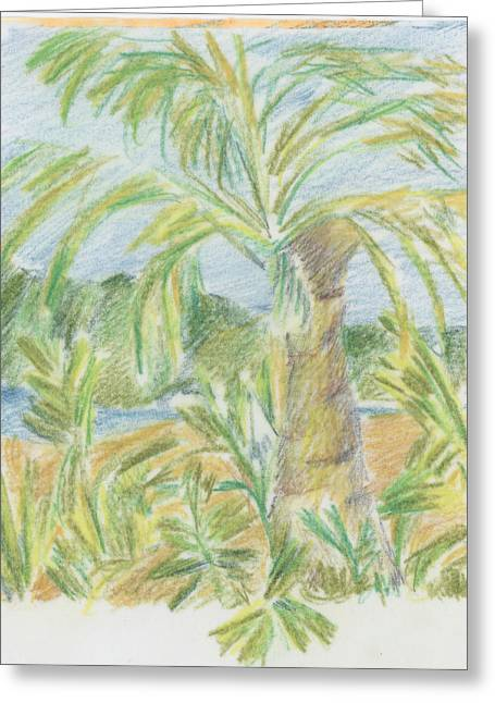 Kauai Palms Greeting Card