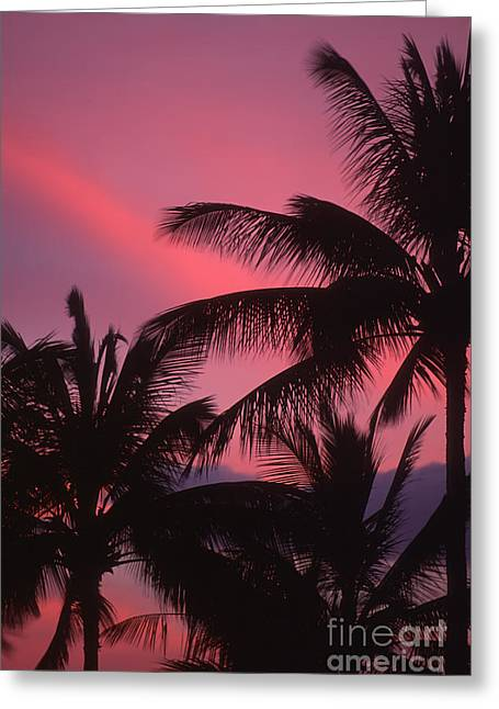 Kauai Sunset 2 Greeting Card by Stan and Anne Foster